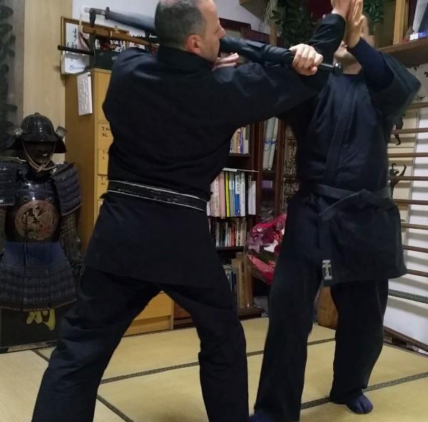 Mehrpuyan-Kung-Fu